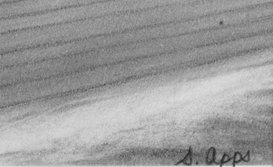 Signature detail