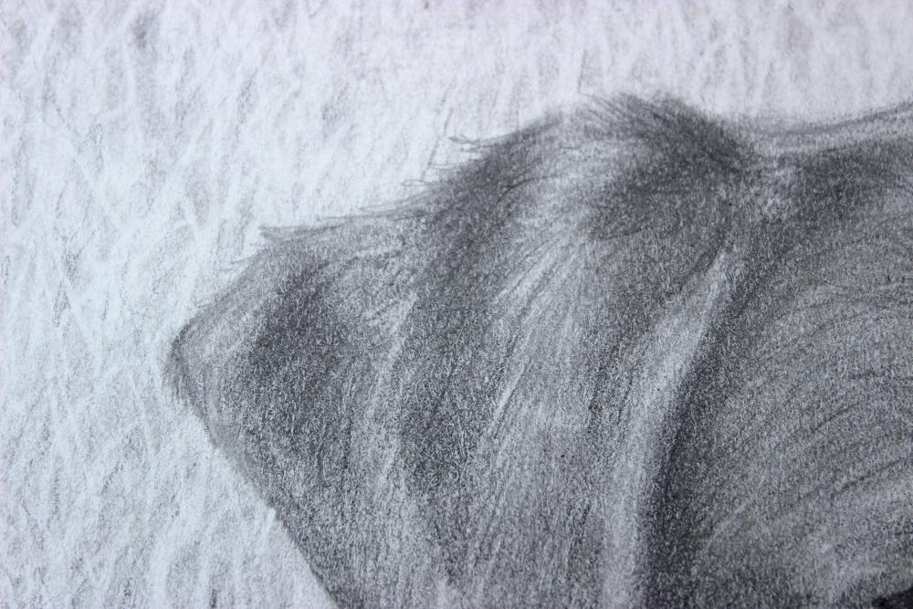 Milo ear 2