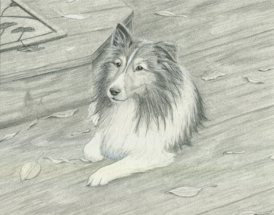 lassie-finished