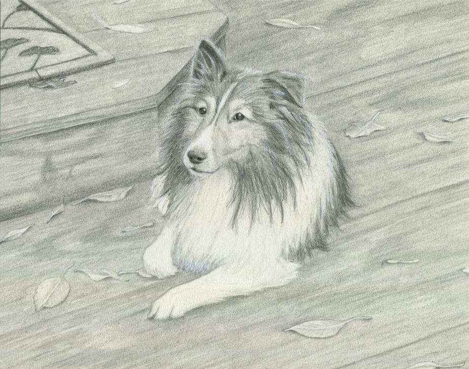 Behind the Scenes:Lassie