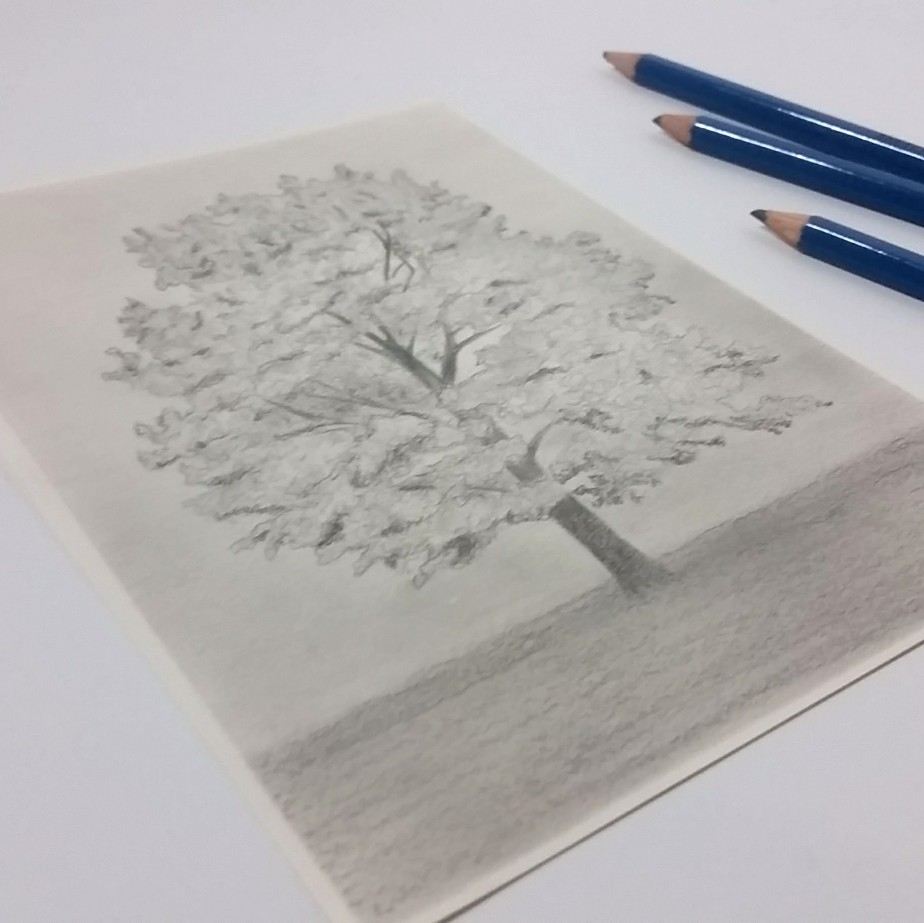 Drawing a Day Challenge: Day#4